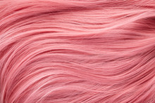 Close Up View Of Colored Pink ...