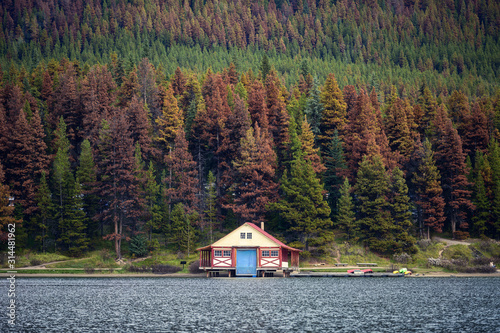 Boathouse with canoe on pier in autumn pine forest on hill in Maligne lake Fotobehang
