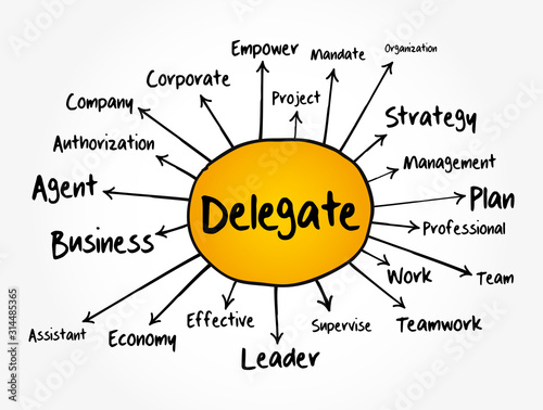 Delegate mind map flowchart, business concept for presentations and reports Wallpaper Mural