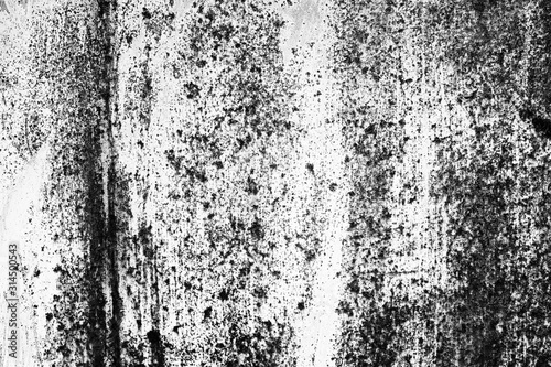 Fototapety, obrazy: abstract background. monochrome texture.