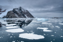 Breaking Ice Floe Near Arctic ...