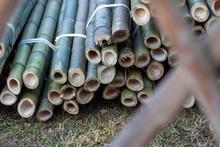 切り出された竹
