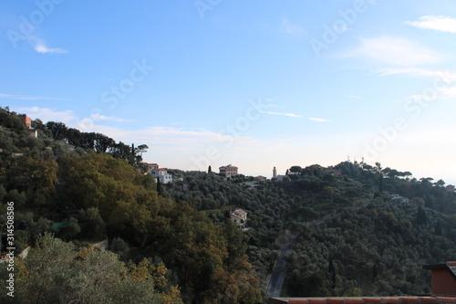 Photo Il colle arboreo di Castellaro con il borgo di San Pantaleo a Zoagli