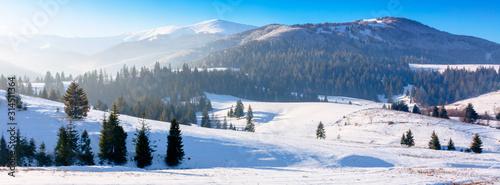 Fotografia mountainous countryside in wintertime