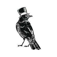 Black Raven Crow Bird Vector