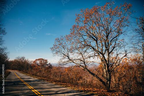 Blue Ridge Parkway, South River, Lyndhurst, Virginia, USA.