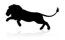A Male Lion Safari Animal In S...