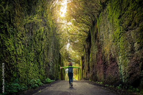 Fototapeta Woman walks alone in a beautiful natural setting with arms open enjoying freedom and nature. Girl tourist walking on the path between two rock walls with wild vegetation, mosses and ferns. obraz