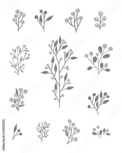 Obraz set of floral elements - fototapety do salonu