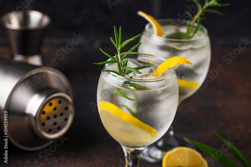 Gin tonic cocktail with lemon Tableau sur Toile