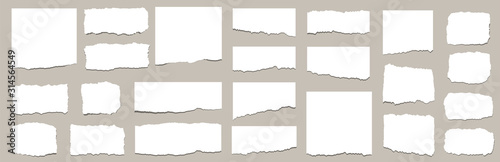 Obraz Torn sheets of paper. Torn paper strips set. Vector illustration - fototapety do salonu