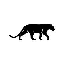 Lion, Tiger, Jaguar, Panther, Cheetah Vector Black White Background
