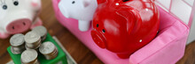 Group Of Piggy Bank Sit On Sof...