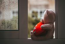 A Toy Pink Sad Missing Bear Wi...
