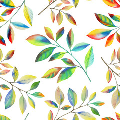 Panel Szklany Optyczne powiększenie Colorful leaves on a branch. Seamless hand-drawn graphic leaves pattern garden wallpaper on a white background. Vintage floral background. Botanical illustration.