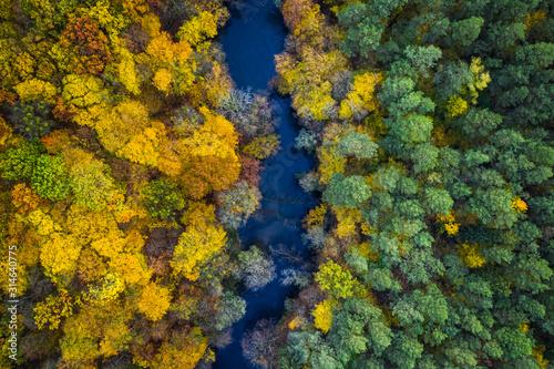widok-z-lotu-ptaka-blekitna-rzeka-i-koloru-zoltego-las