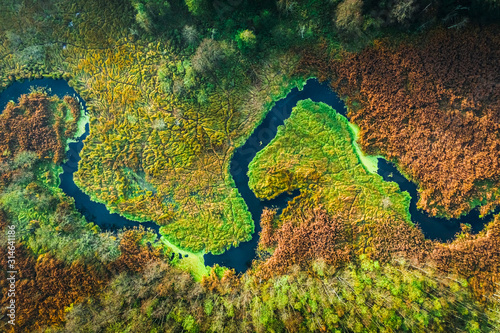 Obraz Top down view of river and swamps in autumn, Poland - fototapety do salonu