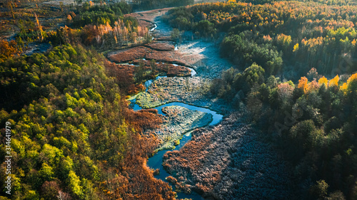 Fotografie, Obraz  Frozen swamps and forest in autumn, view from above