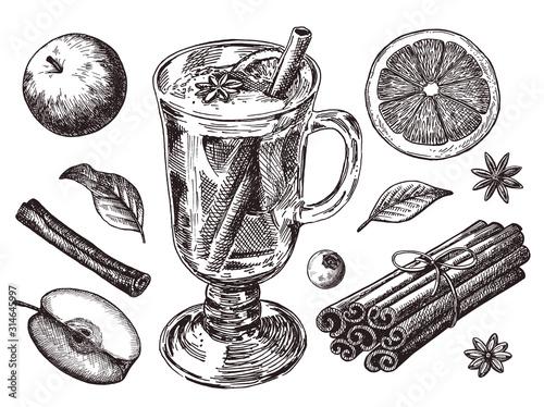 Obraz na plátně Set of mulled wine, fruit and spices, hand drawn illustrations