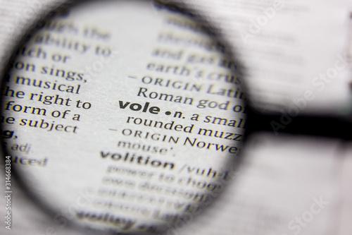 Fotografía  Word or phrase Vole in a dictionary.
