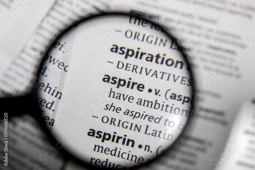 The word or phrase aspire in a dictionary. Canvas Print
