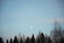 北欧の空と月と森