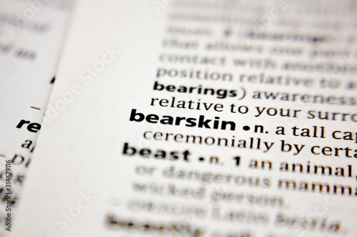 Word or phrase bearskin in a dictionary. Canvas Print