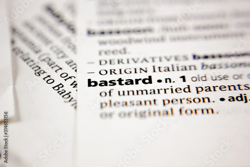 Word or phrase bastard in a dictionary. Canvas Print