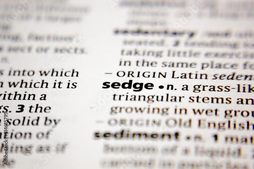 Fotografie, Obraz Word or phrase sedge in a dictionary.