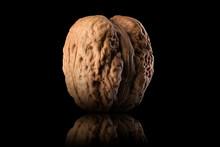 Macro Photo Of Whole Walnut With Reflection Isolated On A Black Background