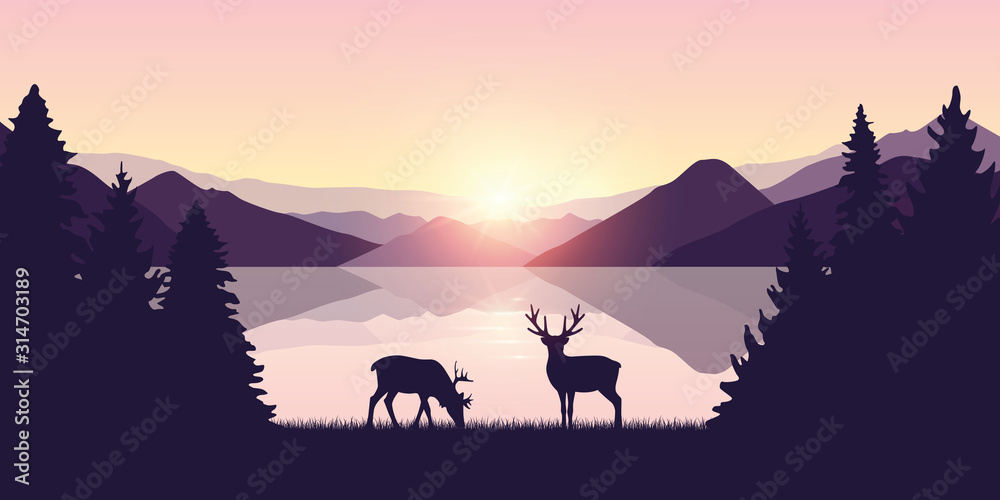 Fototapeta two reindeers by the lake at sunrise wildlife nature landscape vector illustration EPS10