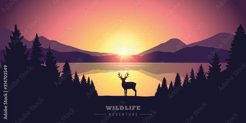 Fototapeta wildlife adventure elk in the wilderness by the lake at sunset vector illustration EPS10