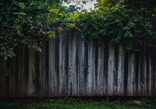 Mysterious Wooden Fence In The Forest