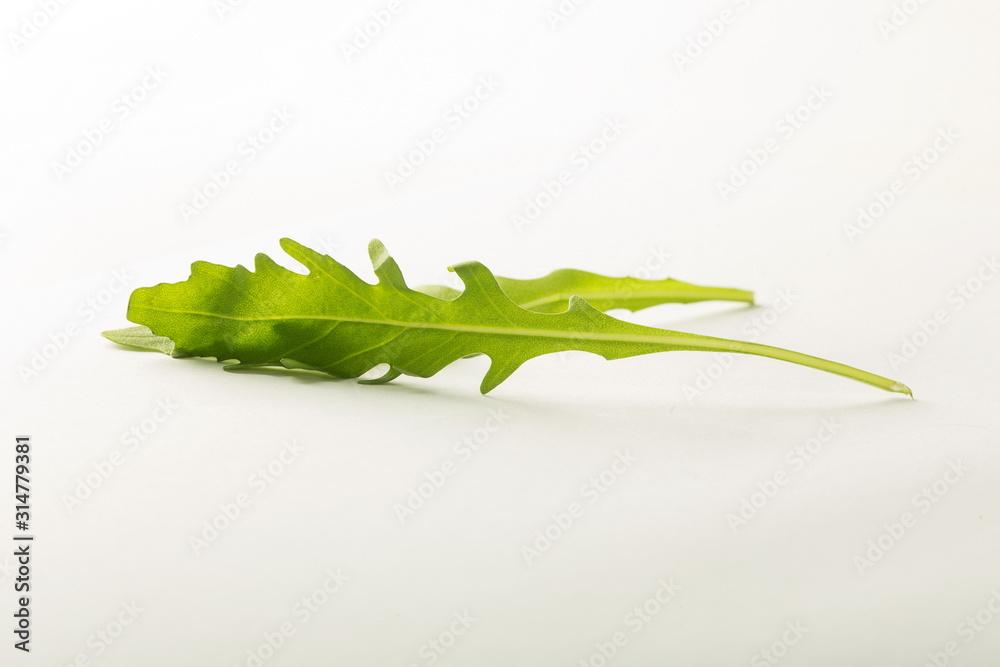 Fototapeta sałata rukola liść