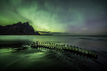 Skeleton of a beached whale under an Aurora Borealis (Northern Lights)