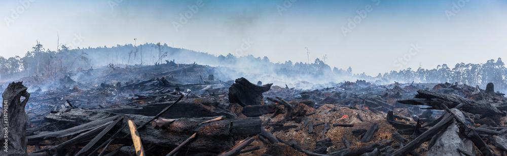 Fototapeta Bushfire smouldering in Australian Outback