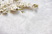 Flowering Cherry Branches On A Marble Surface
