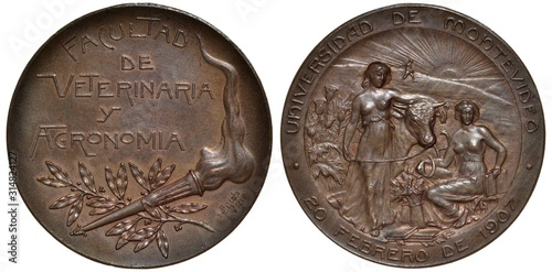Fotografie, Obraz Uruguay Uruguayan medal 1907, subject Agricultural and Veterinary Faculty of Uni