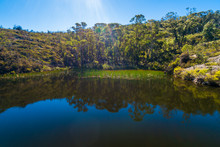 Natural Pond To Swim In Austra...