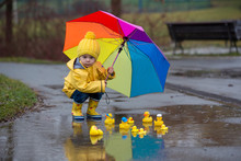 Beautiful Funny Blonde Toddler Boy With Rubber Ducks And Colorful Umbrella, Jumping In Puddles And Playing In The Rain