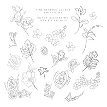 Collection Of Delicate Line Art Vector Hand Drawn Delicate Botanicals, Plants, Flowers, Branches, Leaves, Blossom. Pencil Drawing Illustration. Leaf Logo. Magnolia, Forget Me Not, Petals