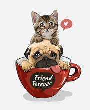 Pug Dog And Little Kitten In R...