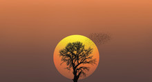 A Silhouette Of Large Bird Flock With Lone Dead Tree And Egg Sun At Sunset
