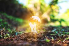 Closeup Image Of A Light Bulb ...