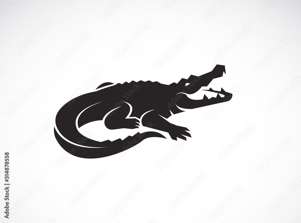 Fototapeta Vector of crocodile design on white background. Wild Animals. Reptile. Easy editable layered vector illustration.