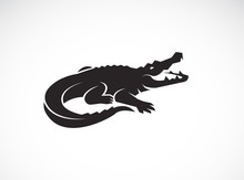 Vector Of Crocodile Design On ...