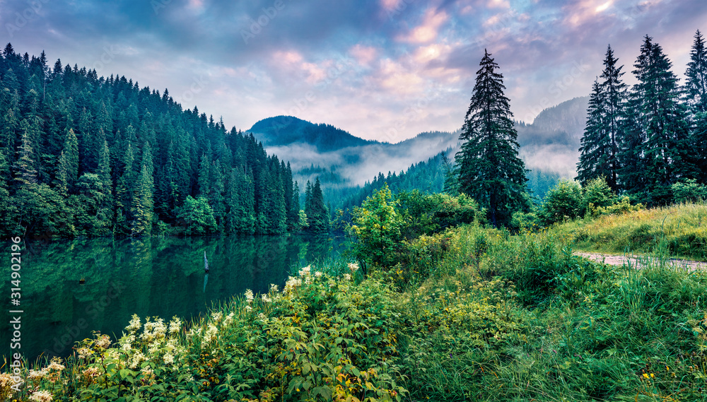 Fototapeta Dramatic morning scene of Lacu Rosu lake. Misty summer sunrise in Harghita County, Romania, Europe. Beauty of nature concept background.