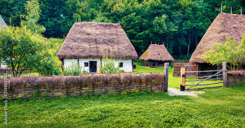 Green summer view of traditional romanian peasant houses Fototapet