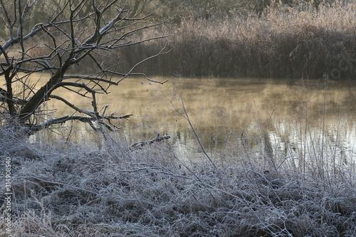 Dampfende Amper im Morgenfrost Canvas Print