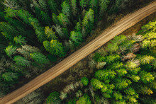 Rural Forest Road From Above S...